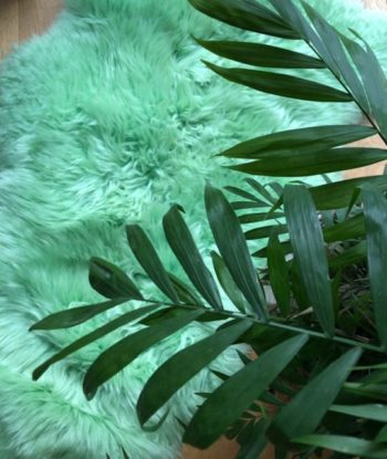 light green sheepskin