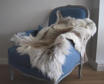 Light Reindeer Rug
